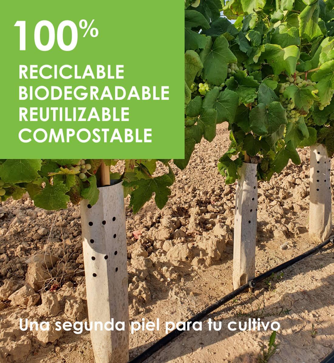 cuidatree protectores agricultura sostenible