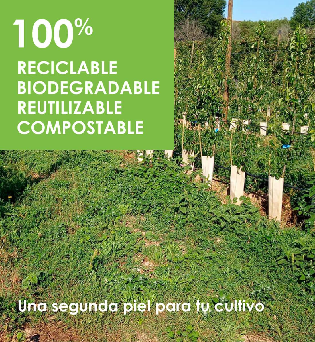 Cuidatree. PROTECTOR DE ÁRBOLES Y PLANTAS